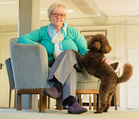 How hearing dogs help deaf people