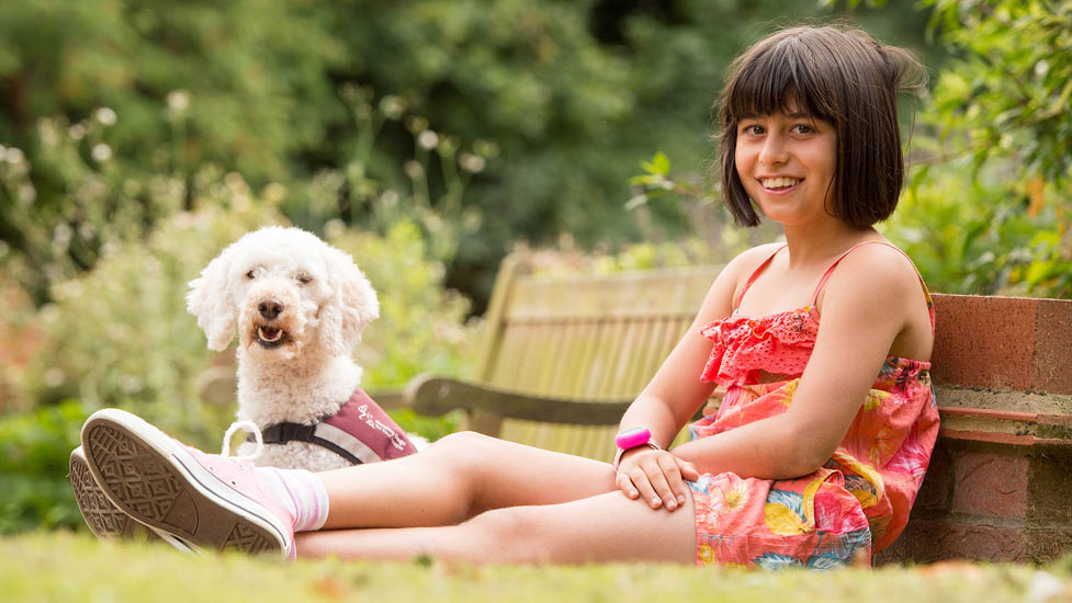 poodle hearing dog and deaf child recipient