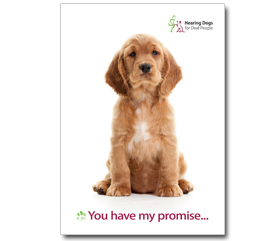 Our supporter promise