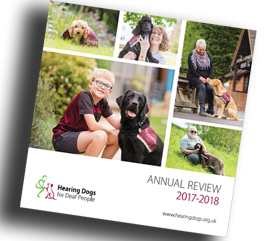 Annual review 2017-2018