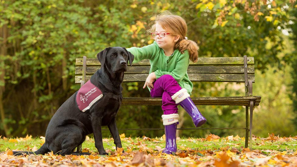 8 Things You Might Not Know About Hearing Dogs For Deaf People