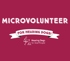 become a microvolunteer