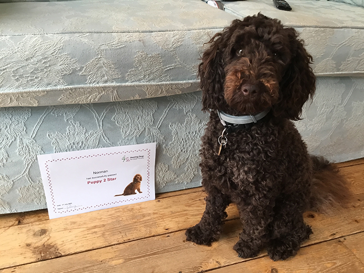 Norman sitting with his training certificate