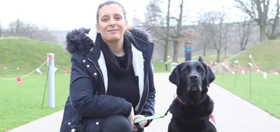 hearing dogs blog