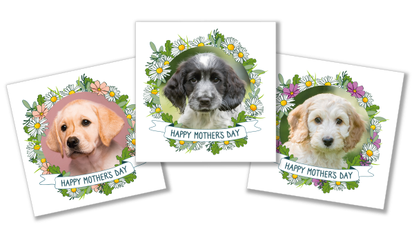 Mothers day puppy cards