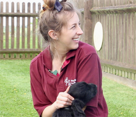 welcome to our puppy block hearing dogs for deaf people