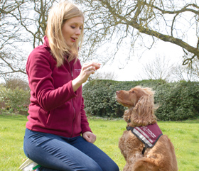 E6: Rachel Riley becomes a dog trainer