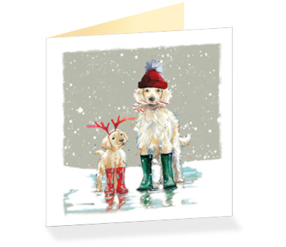 Winter Ready Cards Pack Of 10