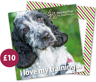 £10 Hearing Dogs Gift Card - Spaniel
