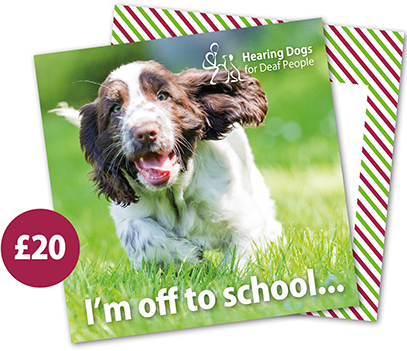 £20 Hearing Dogs Gift Card - Spaniel