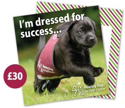 £30 Hearing Dogs Gift Card - Labrador