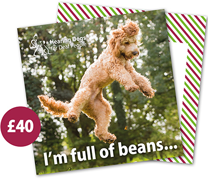 £40 Hearing Dogs Gift Card - Cockapoo