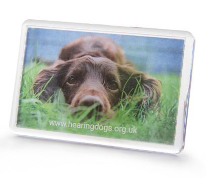 rectangular fridge magnet with photo of hearing dog Gilby.