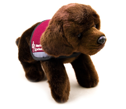 Labrador soft toy dog with dark brown fur wearing a hearing dogs jacket